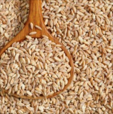Farro- An Excellent Source of Complex Carbohydrates